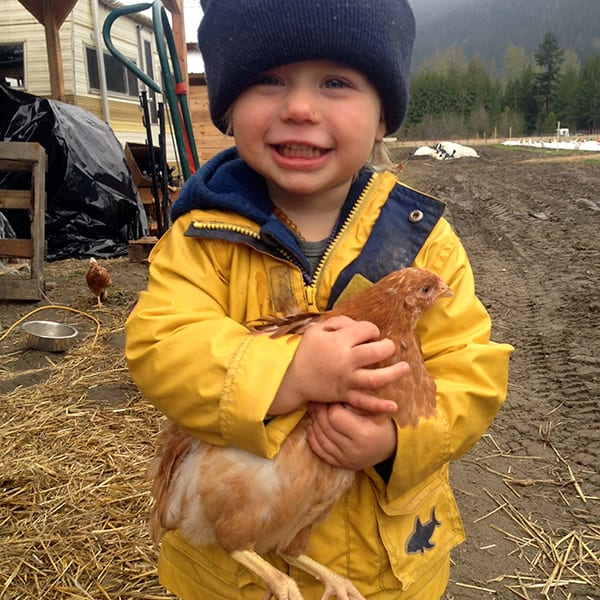 Ice Cap Organics | Certified Organic Farm | Pemberton BC